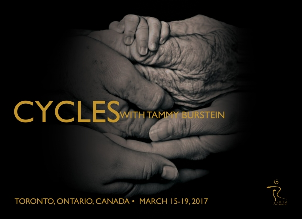tammy-cycles-toronto-front